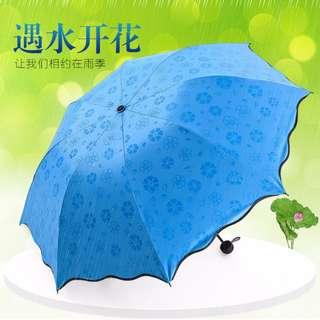 韓版創意水印花晴雨傘 遇水開花折疊三折阿波羅公主傘雨傘