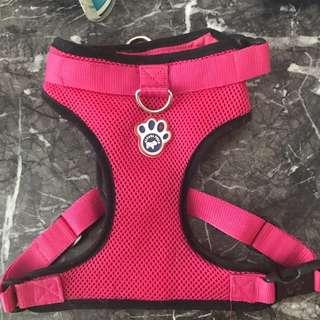 Dog harness Canada Pooch