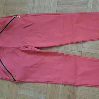 Color Pant