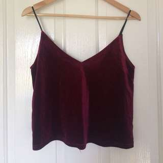 Purple Velvet Crop