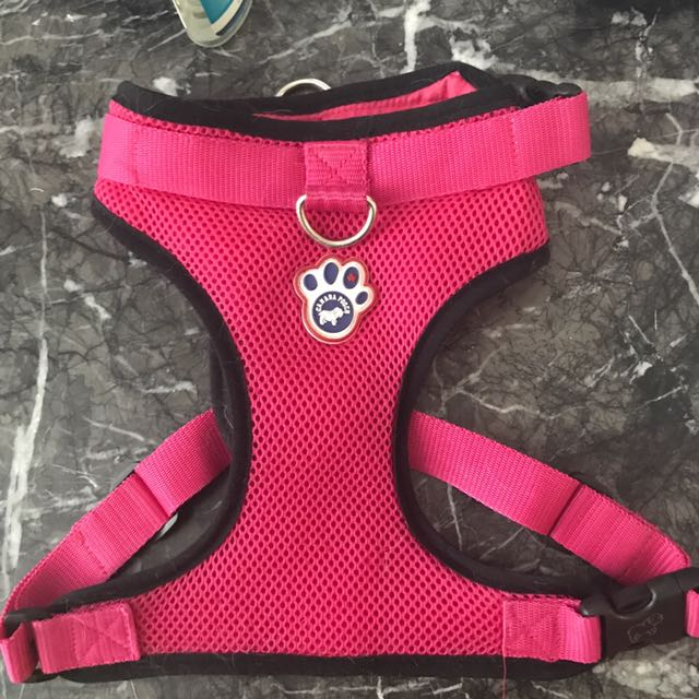 Dog harness Canada Pooch