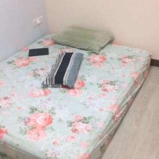 Queen Size Bed / Queen Size Mattress / Bed  / Mattresses / Bedframe