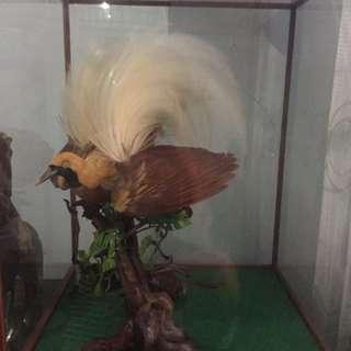 Pajangan Burung Cendrawasih