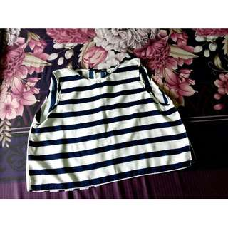 Cropped Top Stripe