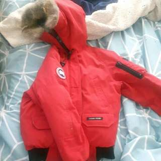 Size Small Canada Goose