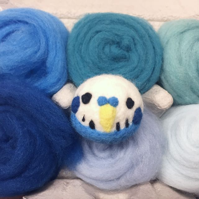 可愛鸚鵡 羊毛氈