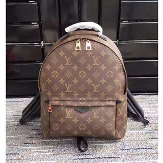 Louis Vuitton Bagpack