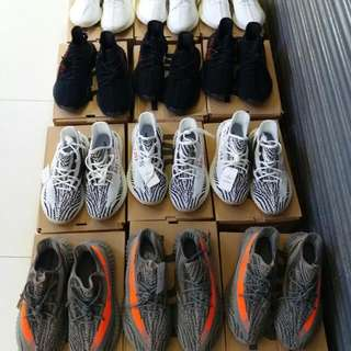 Adidas Sply For Men And Women