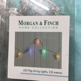 Bed Bath And Table Morgan And Finch Peg Lights