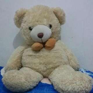 Beruang Besar