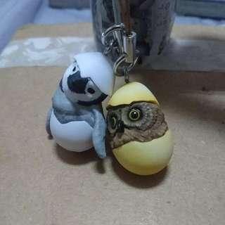 破殼而出 扭蛋 轉蛋 貓頭鷹 剛孵化的動物幼兒