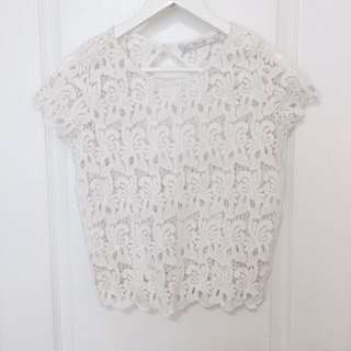 Zara Lace Top Cute Cutout S/P