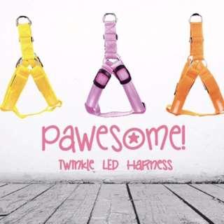 LED Dog Harness