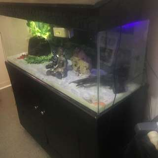 4ftx1ftx2ft Aquarium