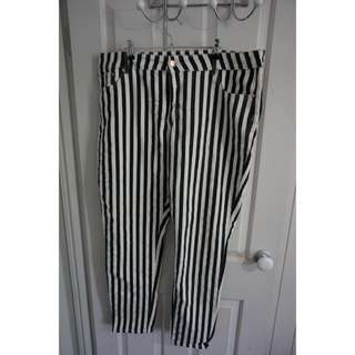City Chic Stripe Pants Size 20