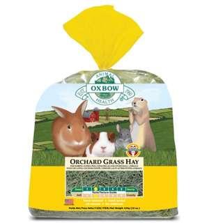 Hay For Ur Pets (40oz)