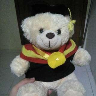 Bonek Beruang Toga