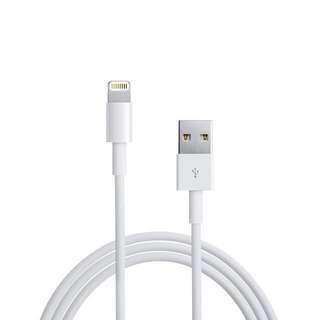 iPhone 保證原廠傳輸線