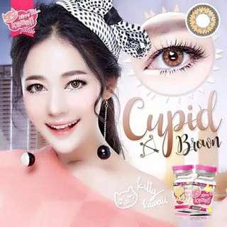 Cupid Kitty Kawaii Softlens