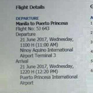 PALAWAN Assume Plane Tickets