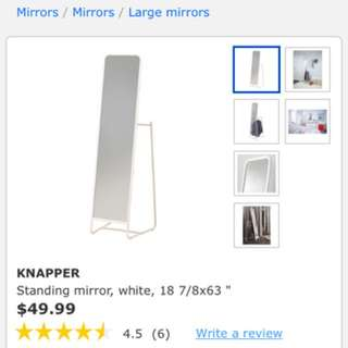 Stand Up IKEA Mirror With Clothes Rack