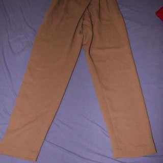 Aritzia Trousers