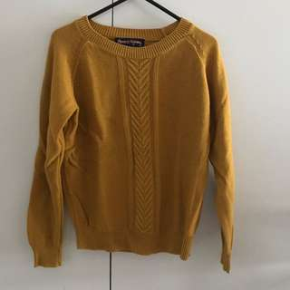 Princess highway Mustard Color Knitwear