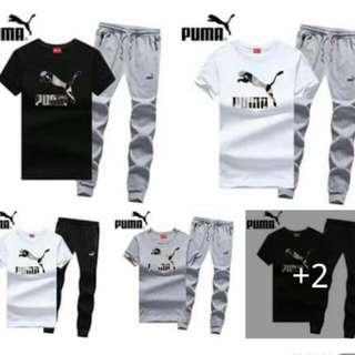 Puma Terno