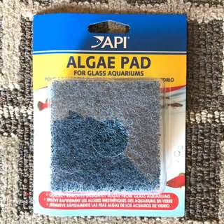 API Algae cleaning Pad (made In USA)