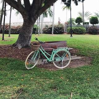 Woman's Vintage Bike