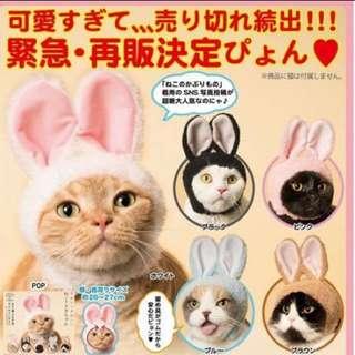 ❗️全新 日本現貨 🇯🇵 貓咪兔子頭套賣萌可愛療癒 轉蛋扭蛋公仔食玩盒玩