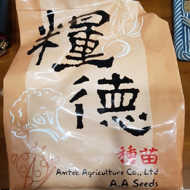貓草(小麥草)種子