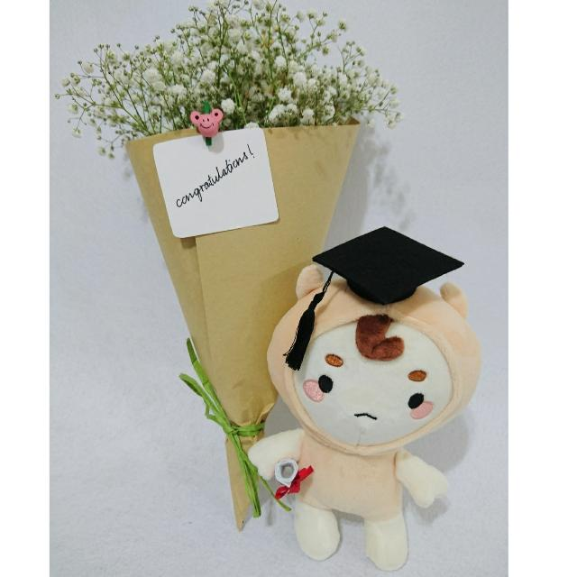 Goblin Graduation Plush Toys Games Others On Carousell