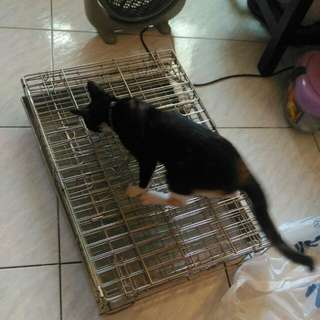 白鐵寵物籠...有缺件..便宜賣