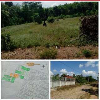 Tanah Daerah Kotabaru Lampung