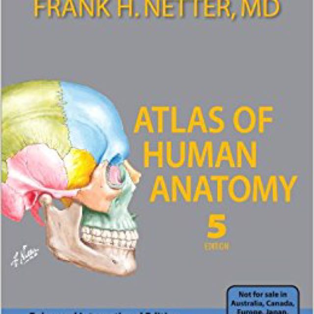 Netters Atlas Of Human Anatomy 5th Edition Books Stationery