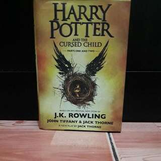 harry poter book