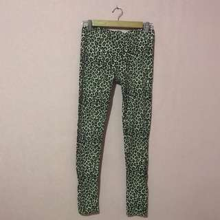 Legging PULLANDBEAR