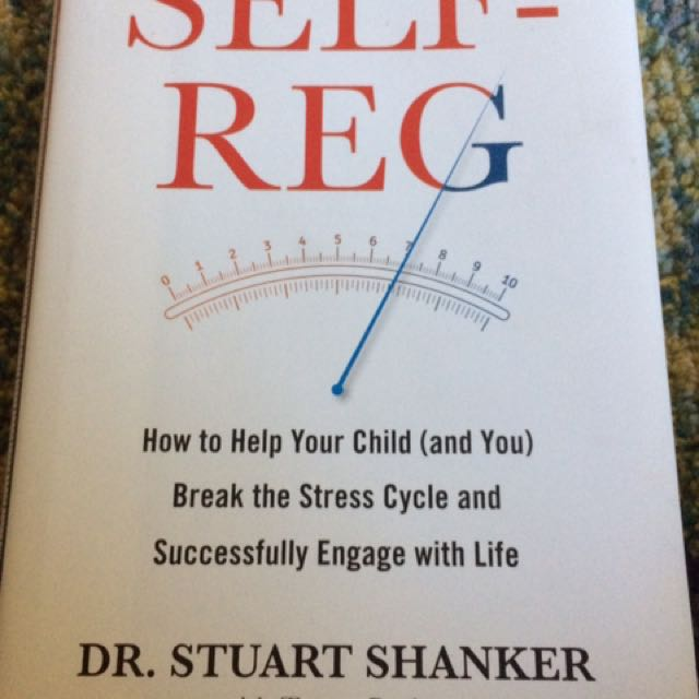 Parenting Book For Self Regulation Help