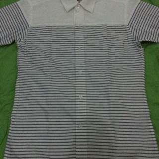 Zanetti Polo (White Striped Medium)