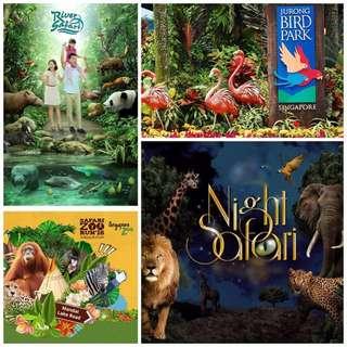 Wildlife - Zoo Or River Safari Or Bird Park Or Night Safari