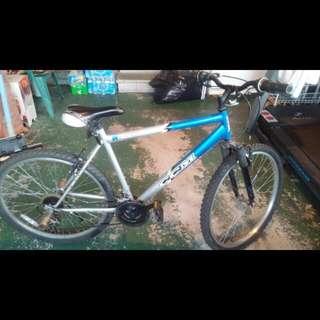 Mountain Bike (26 Inch)