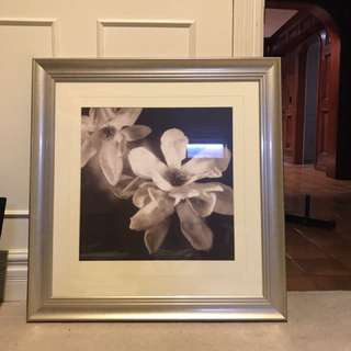 Framed Wall Decor
