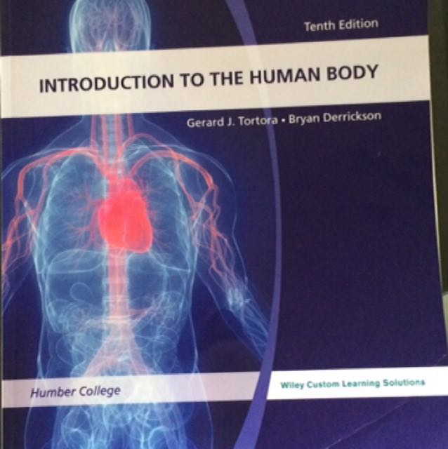 10th Edition Introduction To The Human Body
