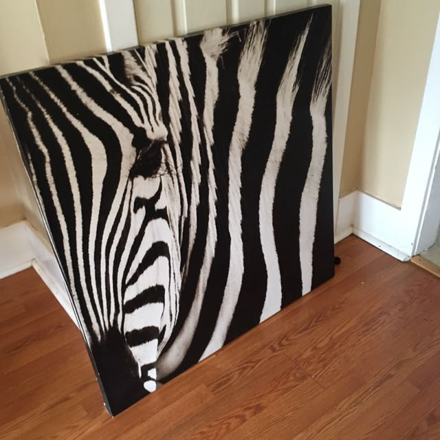 Zebra Canvas Painting