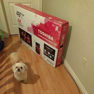 "Toshiba 49"" 4k ultra HD SMART TV $400"