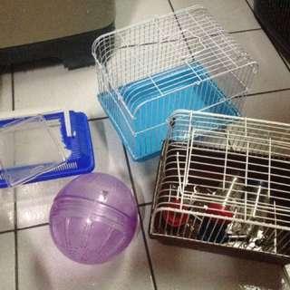 鼠鼠用品 #六月免購物直接送