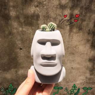 :::OH YEAH!:::摩艾石像盆栽 博物館驚魂夜 吸水材質 多肉植物 盆栽 生日禮物 畢業禮物 聖誕禮物 交換禮物