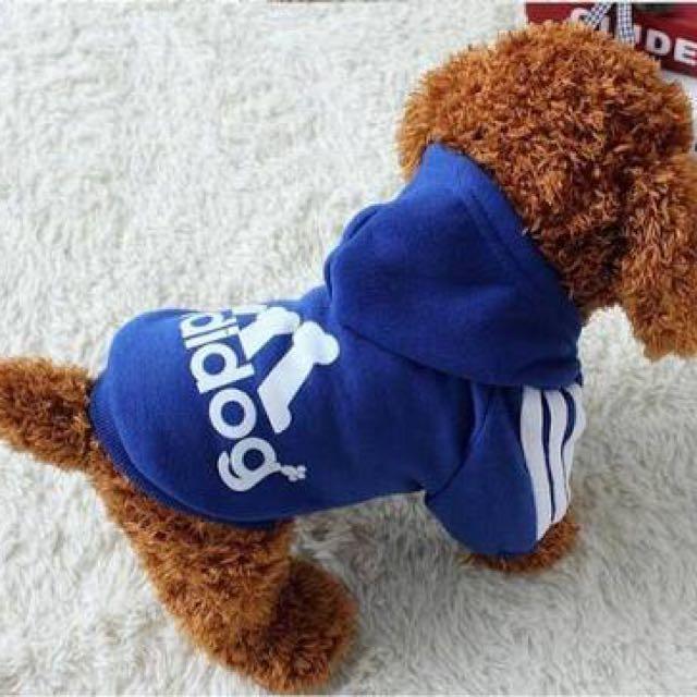 Blue Adidas 'Adidog' Hoodie
