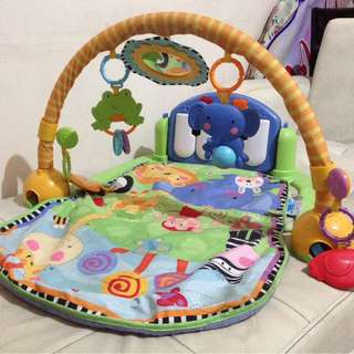 Fisherprice Play Gym